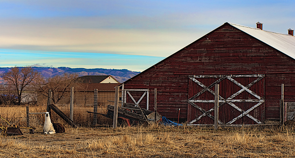 Boise Farms For Sale - Idaho Real Estate & Homes For Sale
