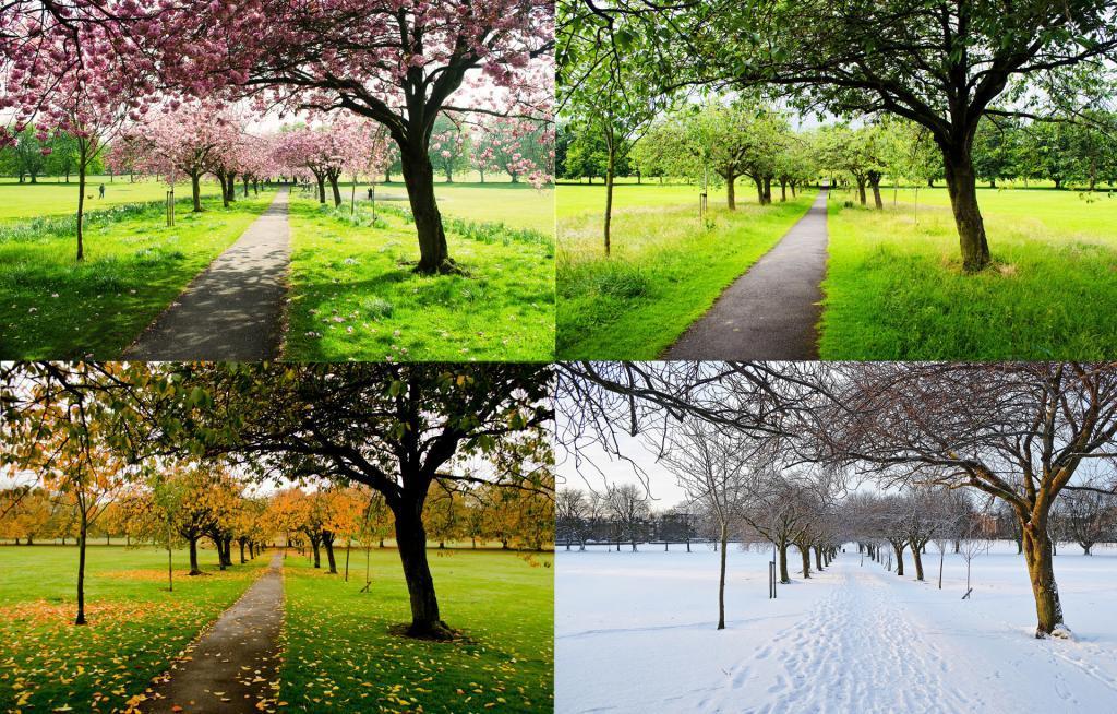 Boise Four Seasons